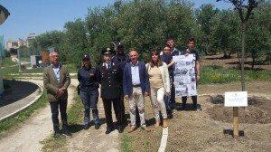 """Il """"Pavoncelli"""" di Cerignola ricorda la strage di Capaci Di;Redazione Speciale News Blog Tv"""